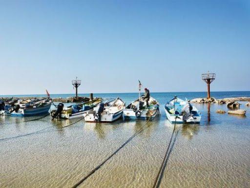 טיול לנחל תנינים ולכפר הדייגים